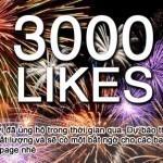 3000 Like Facebook: xin cảm ơn