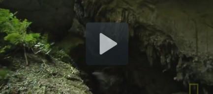 5-9-Video-kham-pha-vuon-quoc-gia-phong-nha-ke-bang
