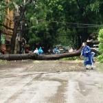 Áp thấp  nhiệt đới suy yếu và tan trên biển, thủ đô Hà Nội hết mưa