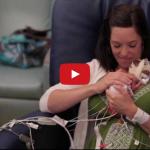 Video clip xúc động về một năm đầu đời của em bé sinh non