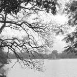 Thời tiết rét đậm bao trùm Bắc Bộ và Bắc Trung Bộ