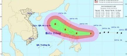 Tin bão gần biển Đông: Bão Rammasun