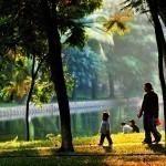 Tuần cuối tháng 11, Bắc Bộ duy trì nắng ấm