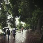 Cập nhật tin bão số 1 – Hà Nội sẽ có mưa to và rất to từ tối nay tới hết đêm 28/7